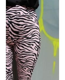 Rose zebra